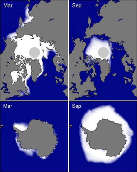 Sea Ice Both Poles