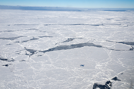 Sea Ice Floe
